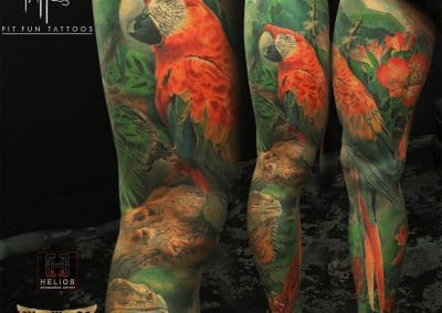 Tropical Sleeve parrot 2017