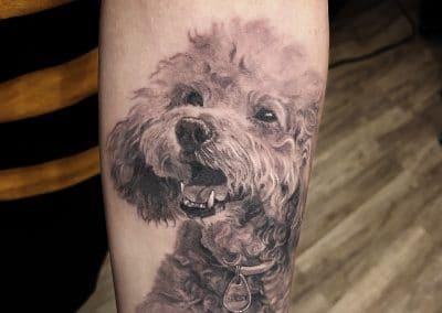 dog portrait 2019