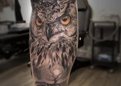 grim reaper owl 2018