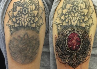 ornamental cover up 2017