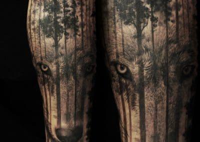 wolf dark forest
